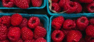2 berries copy