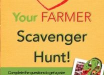 Scavenger-hunt-cover-pic-208x300