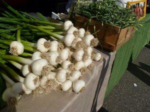New Roots Farm garlic