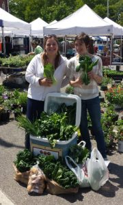 Jess and Carina are helping glean produce for donation from the Portsmouth Farmers' Market.