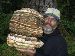 mushroomguy