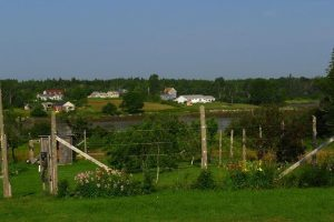 2014_08-Garden-and-orchard-at-Blueberry-Cove