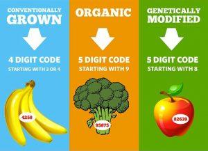 plu-code-infographic