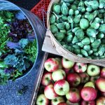 farmers-market-19